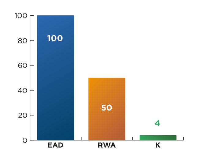 Chart 1: Example of a capital allocation with a RW of 50%