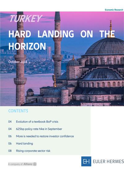 Turkey - Hard landing on the horizon