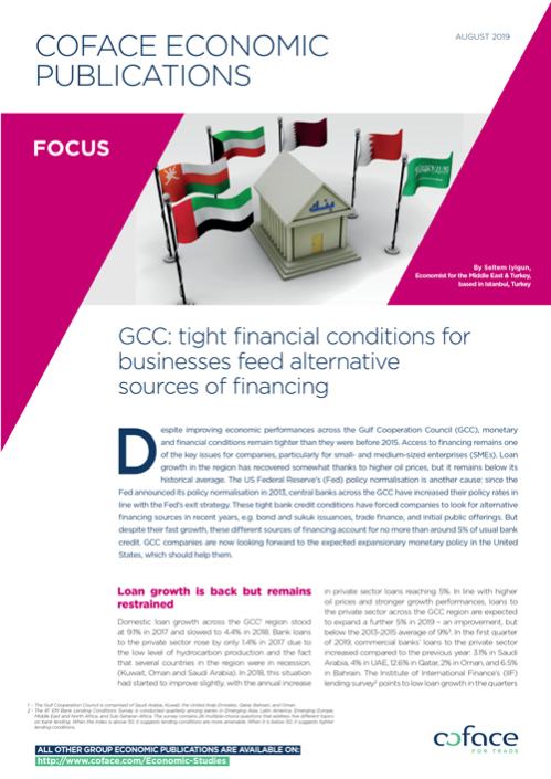 GCC: tight financial conditions for businesses feed alternative sources of financing