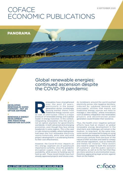Global renewable energies: continued ascension despite the COVID-19 pandemic