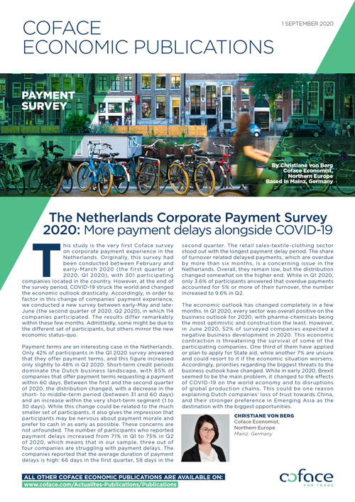 Netherlands Corporate Payment Survey 2020